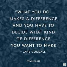 Making A Difference Quotes Cool Make A Difference Quotes Endearing Making A Difference Quotes