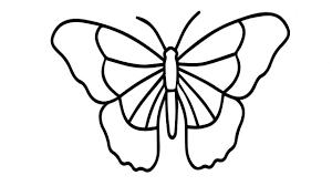 Bộ sưu tập 50 bức tranh tô màu con bướm đẹp nhất dành cho bé gái trong 2021  | Bướm, Bộ sưu tập, Tranh