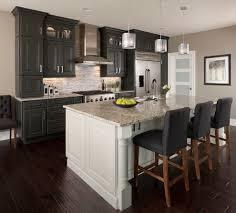 White Transitional Kitchens Dark Kitchen Cabinets Kitchen Transitional With Kitchen Island
