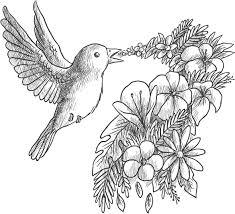 Coloriage Grayscale Gratuit Oiseau Qui Chante Des Fleurs Oiseau