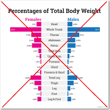 Pyramids Body Parts And Gender Differences Sas Training