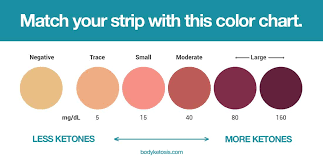 Ketone Strips Color Chart Best Keto Urine Strips To Measure Ketones Incl How To