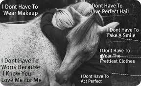Wahre Liebe Pferde Liebe Sprüche Pferde Pferde Liebe Und