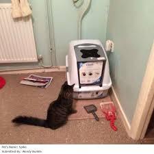 hagen catit hooded cat litter box. Catit Hooded Cat Litter Pan Large L57 X W40 D465cm: Reviews Hagen Box