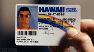 Giphy On Gif The Gifs Superbad Get Best Mclovin w0BHxqa