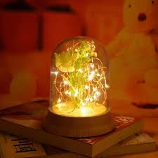 Romantic Led Night Light Copper Wire Lights Usb Charging Or Battery Firework Glass Table Lamp Desk Lamp Home Decoration