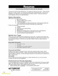 Resume Luxury Government Resume Templates Government Resume