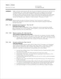 Store Associate Resume Simple Fashion Sales Associate Sample Resume Delectable Duties Sales