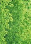 Зеленый фон для открытки