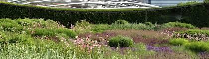 lurie garden chicago il fria nursery gardens of the world