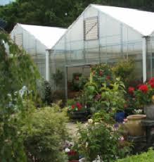 garden center nj. Molzons Garden Center Nj E