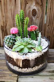 Designs Ideas:Simple Succulent Planter Arrangements Cactus Terrarium Succulent  Planter In Clear Glass