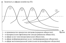 НОУ ИНТУИТ Лекция Информатизация и информационное общество Эволюция социальных систем диаграмма Порэта