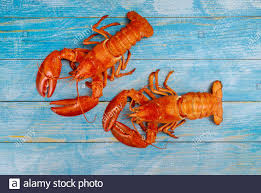Boiled lobster dinner with tasty ...