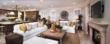 Modern Decorated Living Rooms Living Room Ideas Livingroomideacom