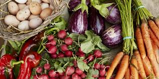 5 Super Simple Ways to Reduce Food Waste at Home - Tips for ...
