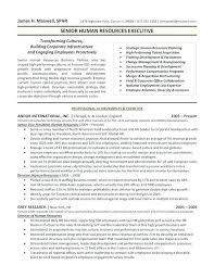 Digital Marketing Resume Sample Classy Digital Marketing Executive Resume Sample Pdf Profile Customer Care