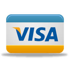 Card Payment Credit Visa Pay Icon