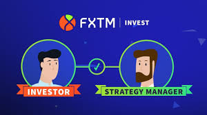 Find information for bitcoin overview provided by cme group. Fxtm Invest Explained Copy Trading Youtube
