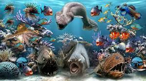 1920x1080 Sea Creatures desktop PC and ...