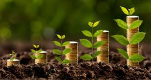 Image result for image of role of agriculture in economic development