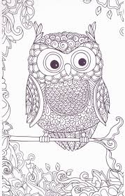 Fresh Free Owl Coloring Pages For Adults Wwwpantry Magiccom