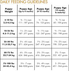 Puppy Feeding Schedule Chart Puppy Food Amount Chart Goldenacresdogs Com