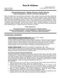 Business Development Manager Resume Samples Sample Resume For Business Development Executive In India Fresh 15