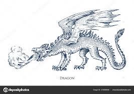 čínský Drak Mytologické Zvíře Nebo Asijské Tradiční Plazů Symbol