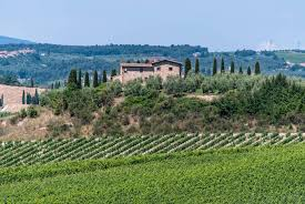 the best wine tours in tuscany my