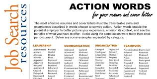 RDrew Action Verbs    insurance cover letter