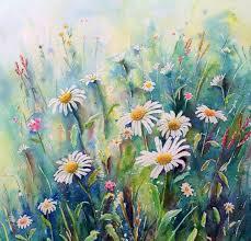 567x544 original watercolour painting daisy field 12 x12 wildflower wild flower meadow painting