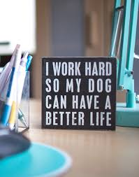 office pet ideas.  pet keep a petfirst attitude home office ideas inspiration dogs u201c intended office pet ideas