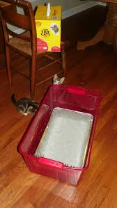 the next step was cutting a little kitty door in the plastic bin so we could keep the lid on and it would be like a little enclosed outhouse for the