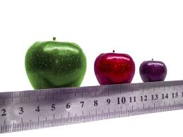 Breast Size Chart Fruit Why Your Bra Size Doesnt Matter Magnify The Woman Within