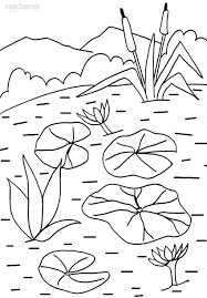 Small Picture Printable Lily Pad Coloring Pages For Kids Cool2bKids