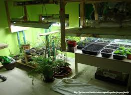 basic types of grow lights