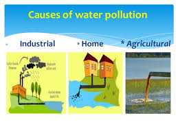 the causes of water pollution essay for kids annotated   water pollution essays and papers