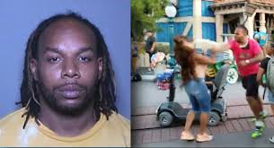 Video: Avery Robinson Charged With 5 Felonies & Faces 7 Years In Jail For  Disneyland Brawl | BlackSportsOnline