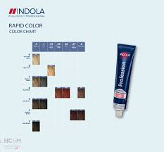 Issue Professional Color Chart Indola Rapid Color Chart In 2019 Salon Supplies