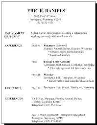 A Resume For A First Job