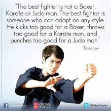 Mma Quotes Extraordinary Bruce Lee Quotes Best Fighter Stardust MMA