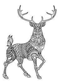 reindeer animal coloring pages