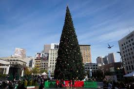 Best Things To Do In San Francisco Bookmark This 2016 SF Holiday Christmas Tree In San Francisco
