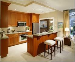 Small Indian Bedroom Interiors Indian Apartment Interior Design Ideas Theapartment