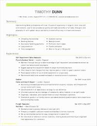 Resume Resume Summary Statement Examples Good For