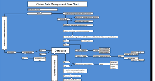 Clinical Data Management Flow Chart Clinical Data Mangement Knowledge Hub Clinical Data