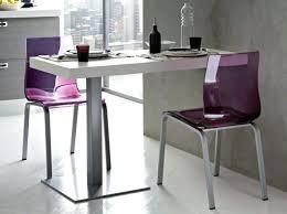Table Cuisine Murale Table Ovale Salle à Manger Maxiloisirsplus