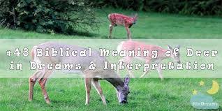 48 biblical meaning of deer in dreams
