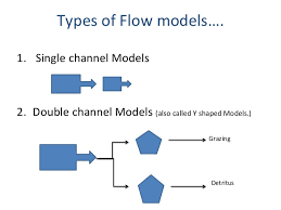 diploma ii es unit environment energy flow in ecosystem single channel models 2